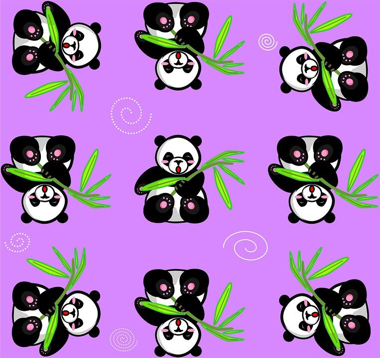 panda-1732361_960_720.jpg