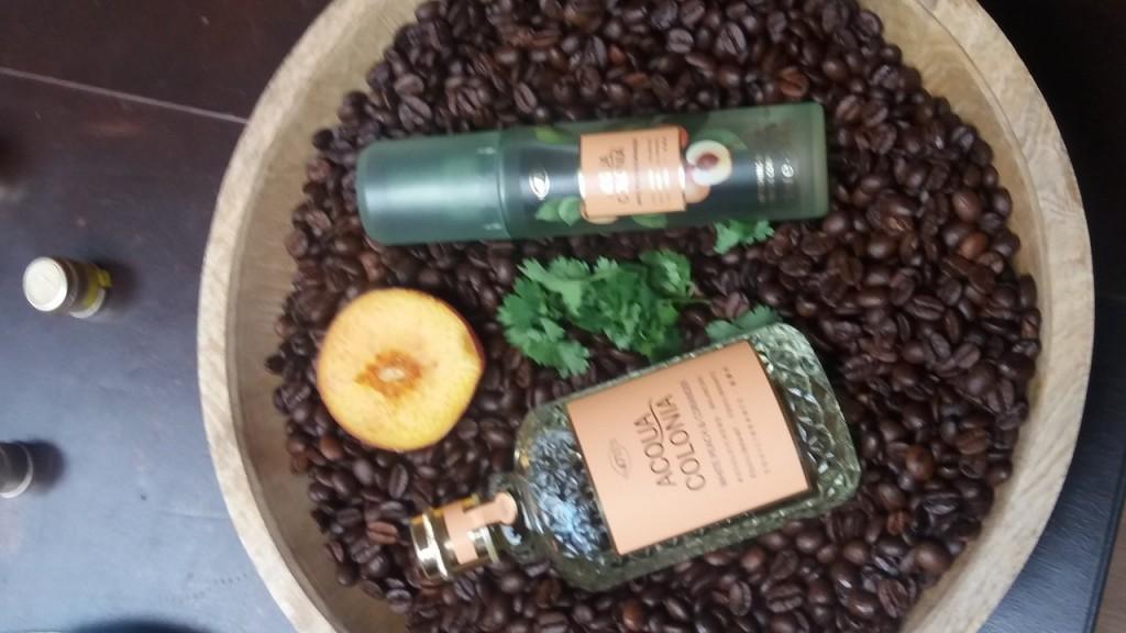 parfum1492029102
