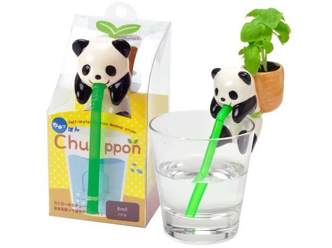 8.1 Chuppon mini tuintje - de schattigste manier om basilicum te planten - coolgift.com